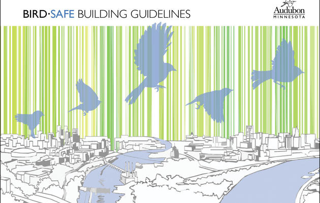 BirdSafe Buildings