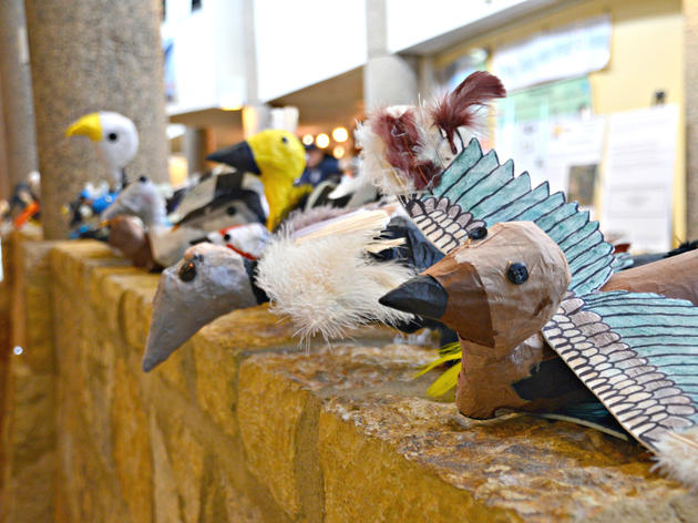 Future conservationists flaunt bird and water wisdom