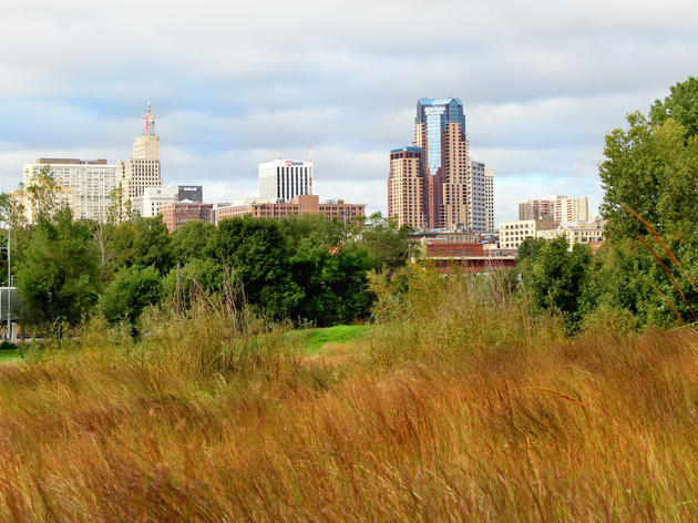 Bird City Program Resources
