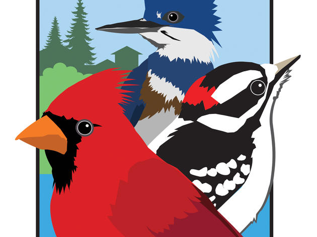 Hastings to be announced as Minnesota's first Bird City